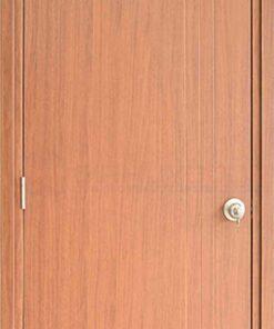 Cửa gỗ cao cấp Hàn Quốc SYB 201