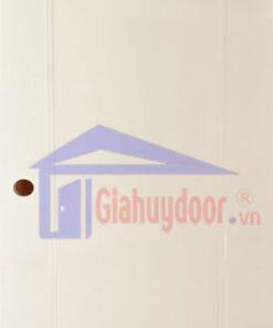 Cửa Nhựa Gỗ SungYu SYA-A05
