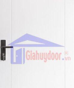 Cửa Nhựa Gỗ SungYu SYA.146-A01