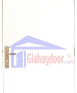 Cửa Nhựa Gỗ SungYu SYA.P1-A01