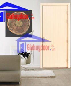 Cửa Nhựa Gỗ SungYu SYB.P1-B01, Cửa nhựa Composite, Cửa nhựa SungYu, Cửa nhựa gỗ, Cửa nhựa cao cấp, Cửa nhựa nhà ở, Cửa nhựa vân gỗ,